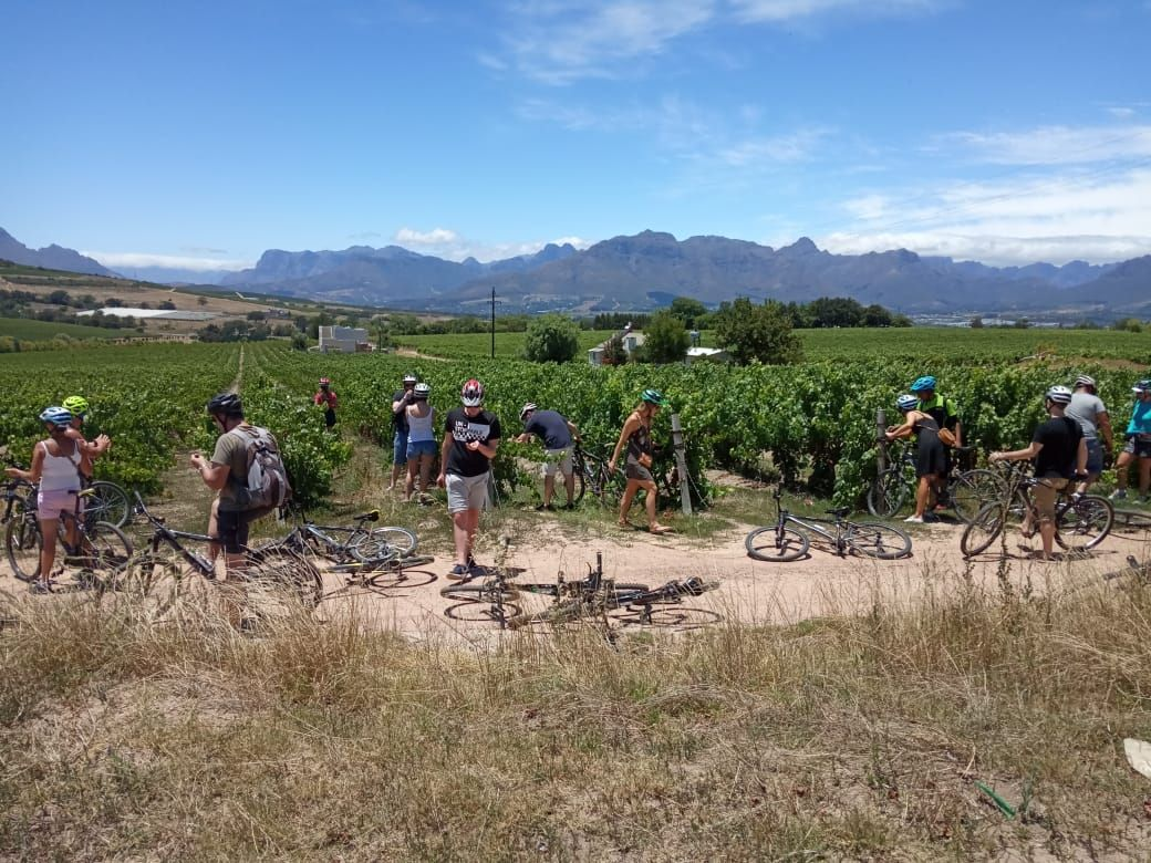 Latest News Archives | Bikes 'n Wines