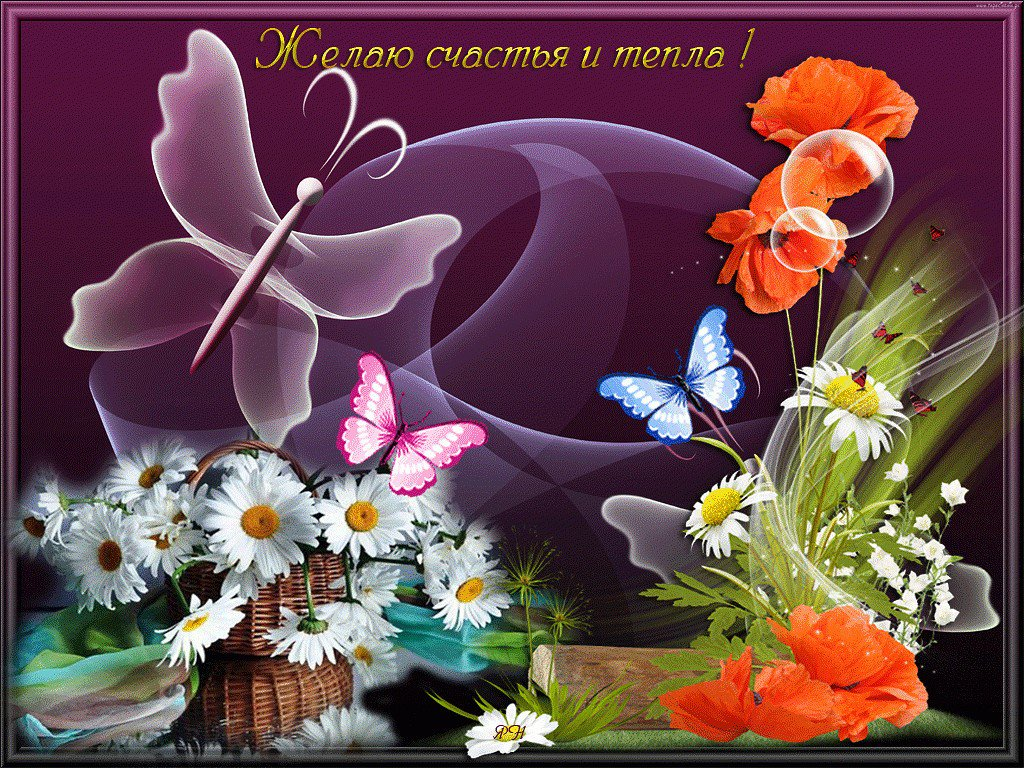 Картинка с цветами и пожеланиями добра и счастья, картинки бегущий
