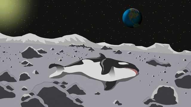 South Park's photo on #LunarEclipse