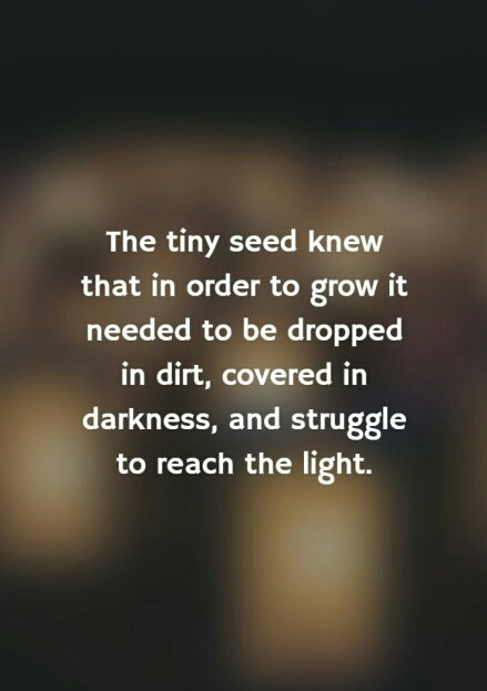inspirational quotes on the tiny seed knew that in order