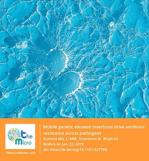 epub pisum sativum cultivation functional properties and health benefits 2014