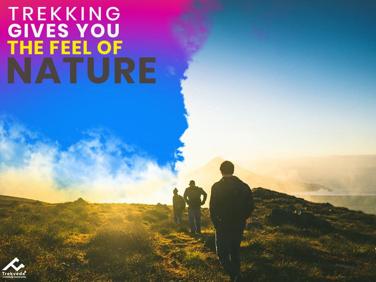 Trekking gives you the feel of nature. https://trekveda.com @Trekveda  . . . . . #Trekveda #trekking #nature #feelthenature #natureview #mountain #photography #photooftheday #instagood #love #beautiful #travel #naturephotography #naturelovers #tourism #tourismindiapic.twitter.com/UdsUqDjZBW