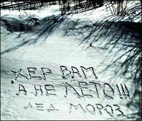 """Капитан арестованного судна """"Норд"""" Горбенко пропал из дома и не выходит на связь, - адвокат Могильницкий - Цензор.НЕТ 8432"""