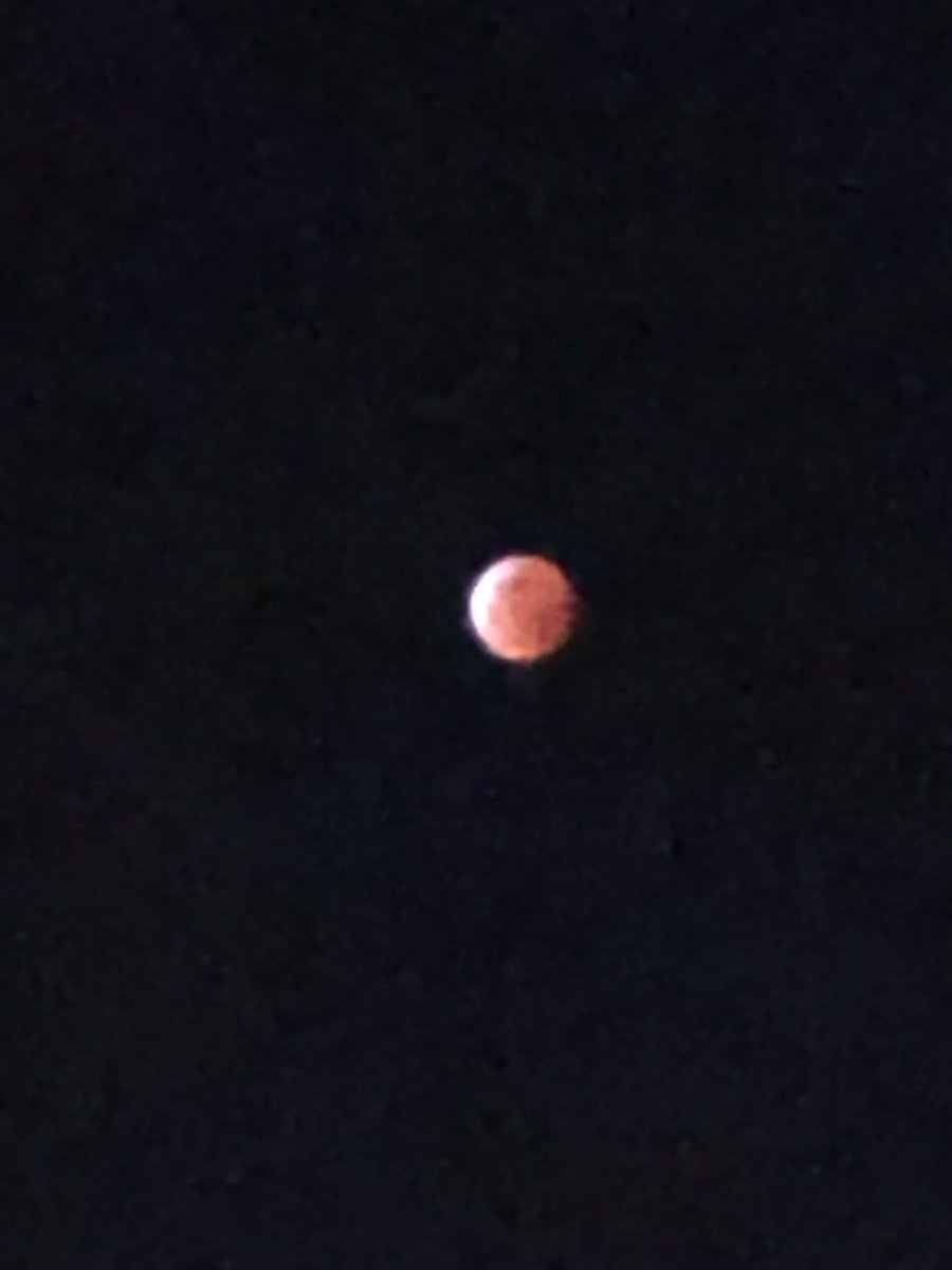 #SuperBloodWolfMoon.  What a site in #LA!  @NBCLA
