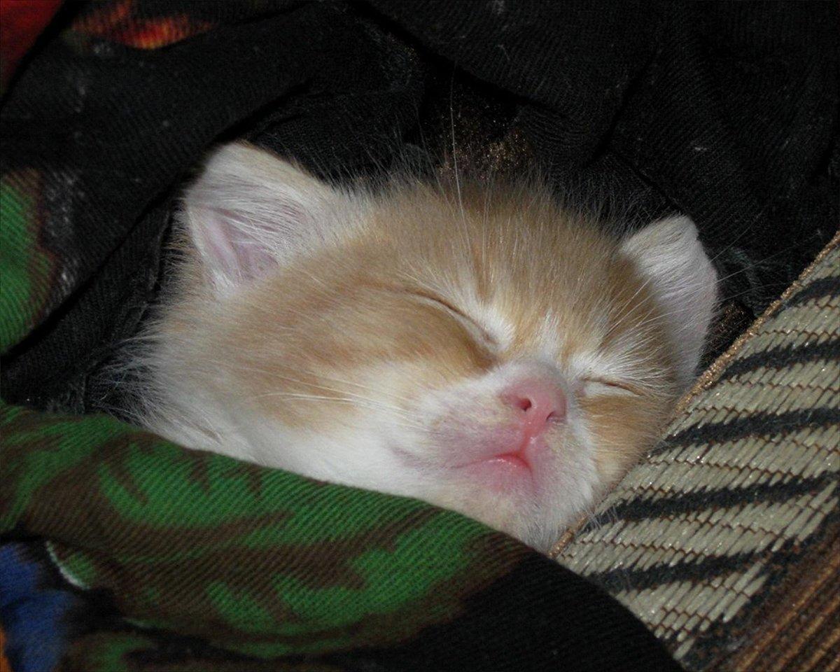 Фото с надписью спать