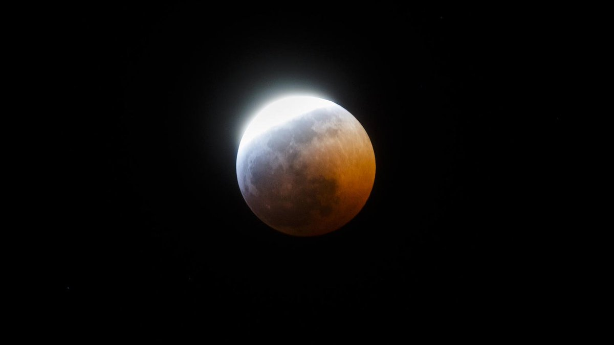 ICYMI: Here's what Sunday night's 'Super Blood Wolf Moon' looked like over Chicago. https://t.co/jQRekDElp9 (via @briancassella, @mandophotos)