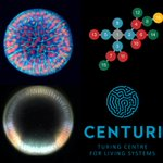 So happy to announce that I am starting an interdisciplinary research group in Marseille, at the new @centuri_ls – Data Science, Embryos and everything in between – Open (PhD, postdocs) positions available, contact me :)