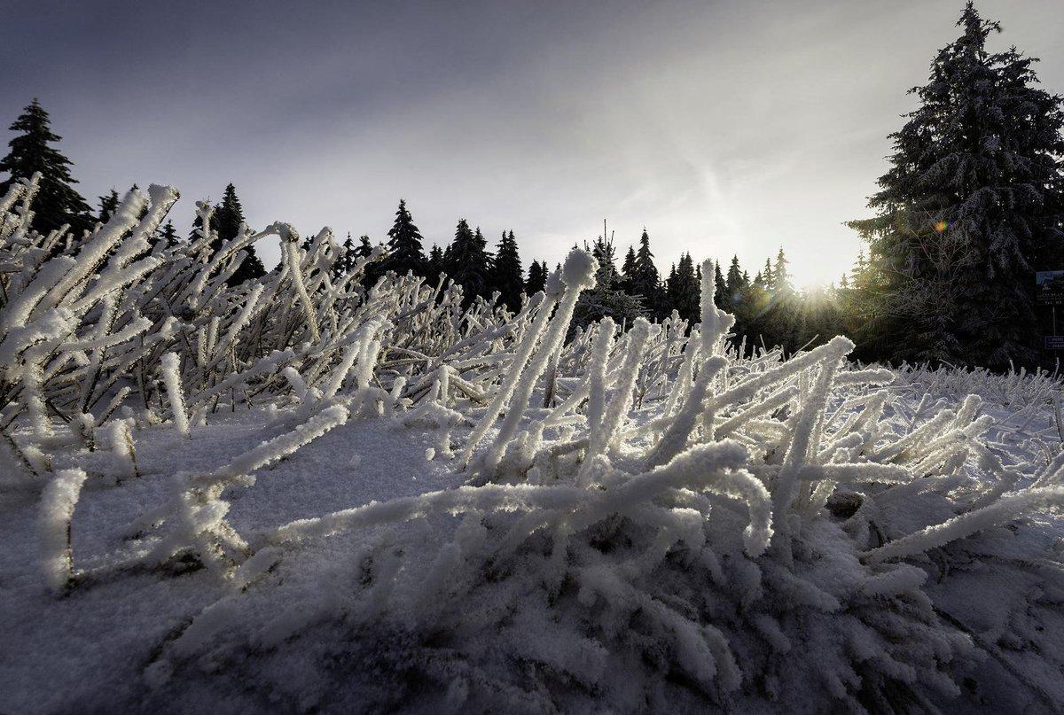 Vague de froid : 24 départements placés en vigilance orange neige https://t.co/CsTyi1G5Gf