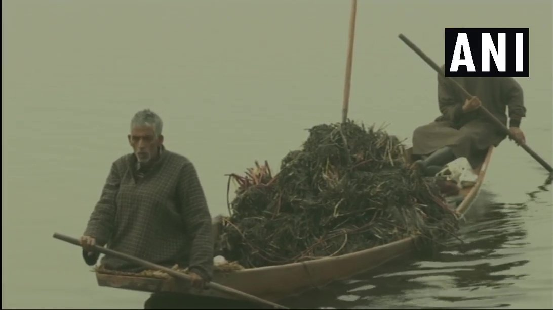 Jammu and Kashmir: Cleaning of Dal Lake, in Srinagar underway by J&K Lakes and Waterways Development Authority. (21-1-19)