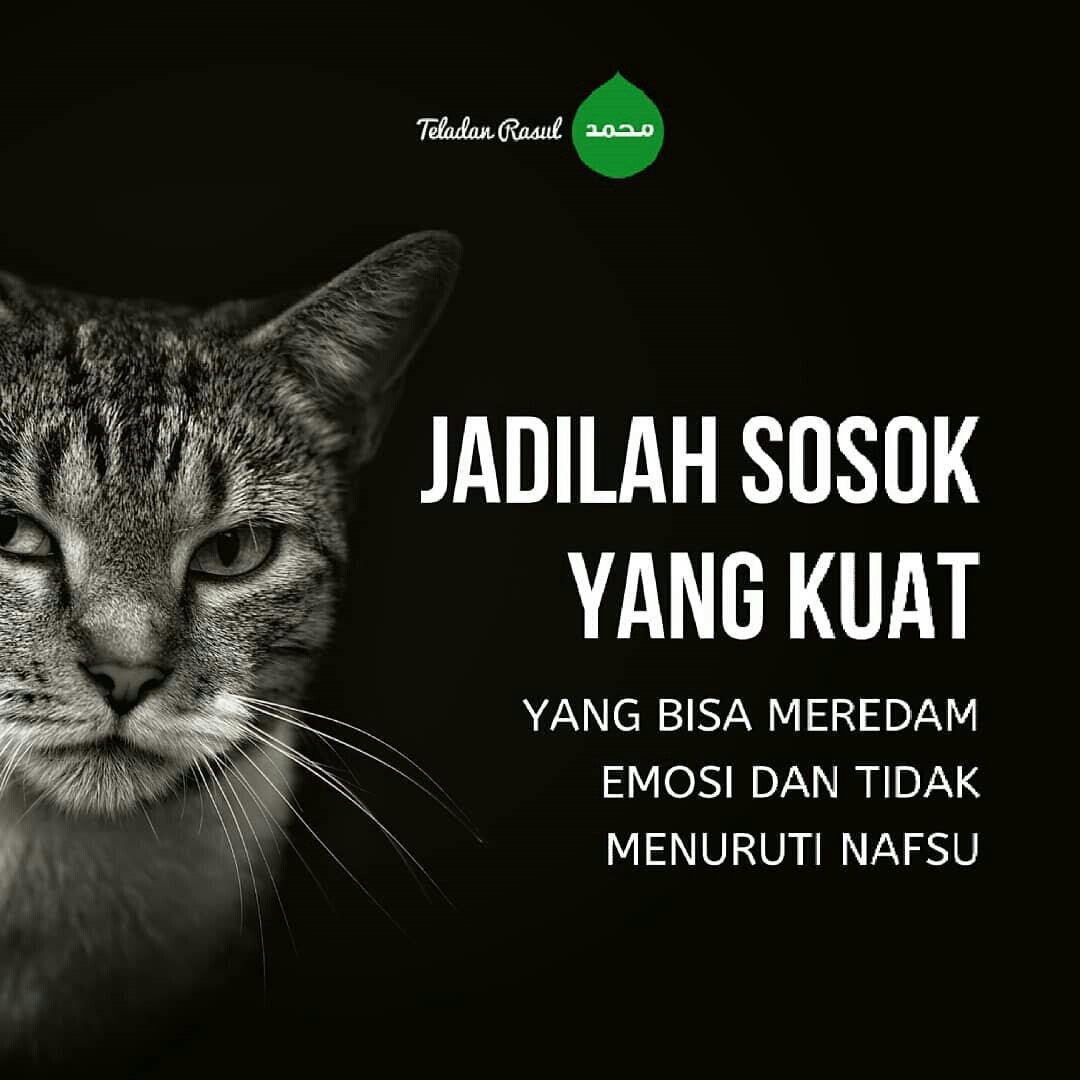 #IslamAgamaSempurna Twitter