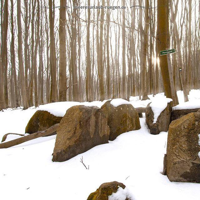 Ulrike Piechottka's photo on #winter