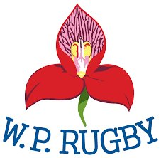 DxhEWFyX4AMIl9u School of Rugby | Jeppe given a scare by St Alban's College - School of Rugby