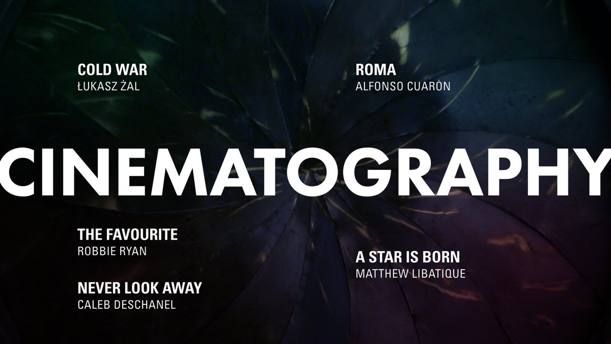 Congratulations to the Cinematography nominees #OscarNoms