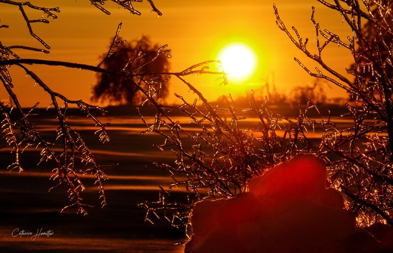 Catherine Hamilton's photo on #winter