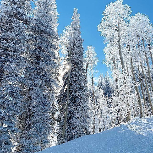 Visit Park City, UT's photo on #winter