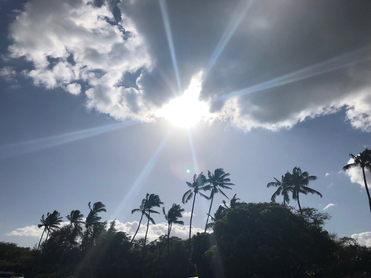 test Twitter Media - Breezy and warm on the North Shore. #paia #cmweather #maui https://t.co/6QBX9v0x4I