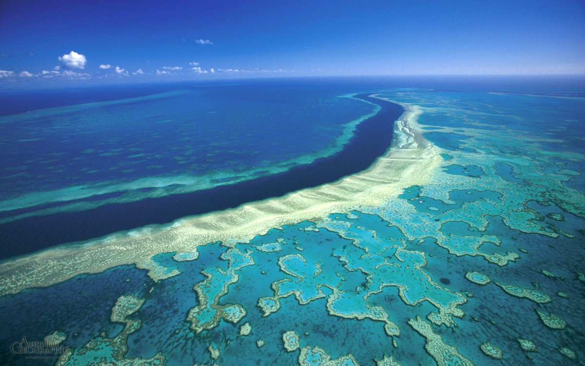 Ewt On Twitter Did You Know That The Great Barrier Reef Is