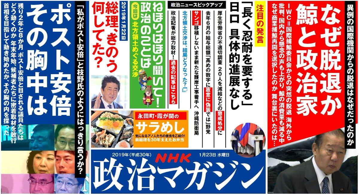 【NHK「政治マガジン」今週号は】 特集は「なぜ脱退か 鯨と政治家」鯨の消費量も減るなかで商業捕鯨再開を選択した、その背景は?もう一本は「ポスト安部 その胸中は」 #政治 https://t.co/qYgA1lLm36
