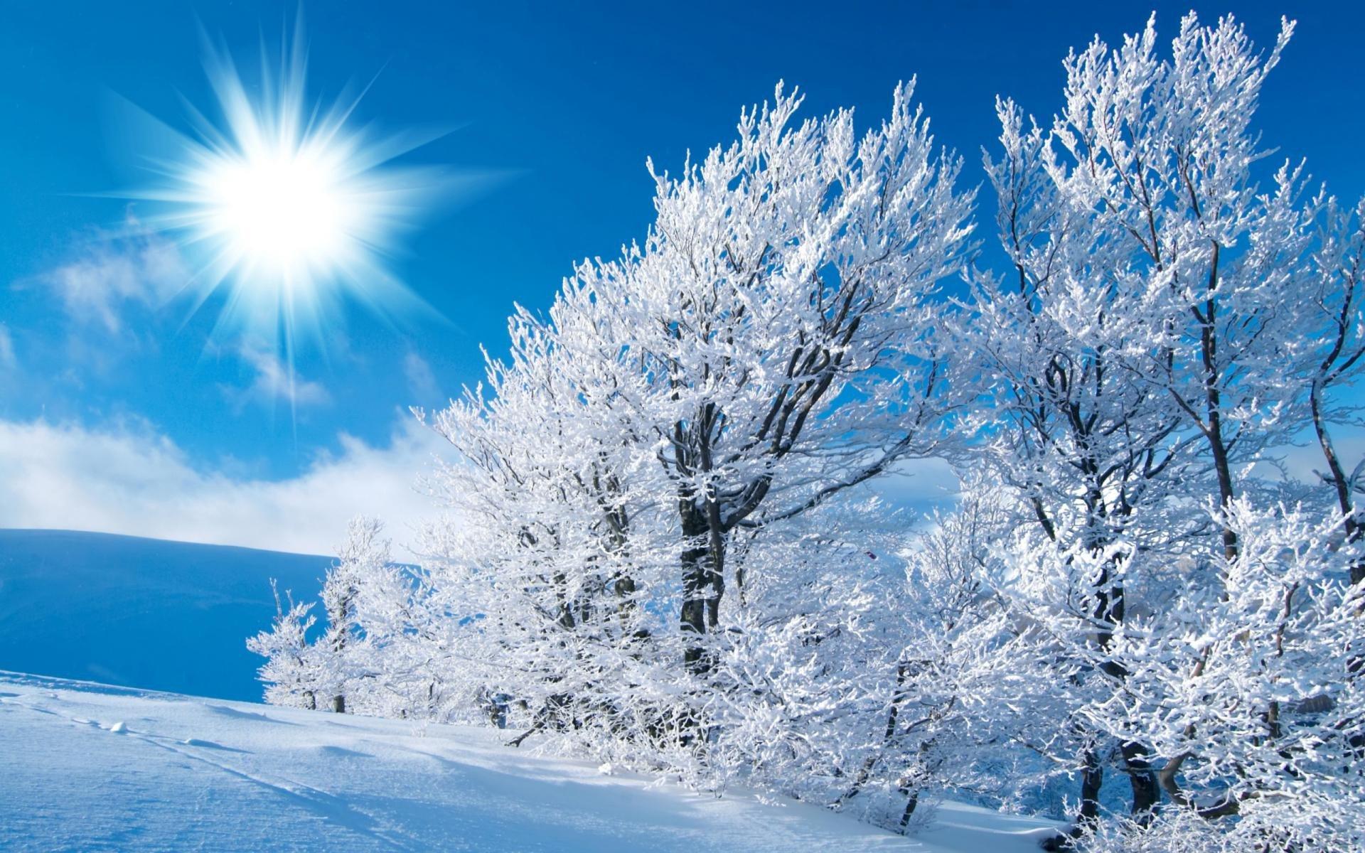 День, февраль картинки природы