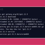 Image for the Tweet beginning: Go 1.11.5 and 1.10.8 have