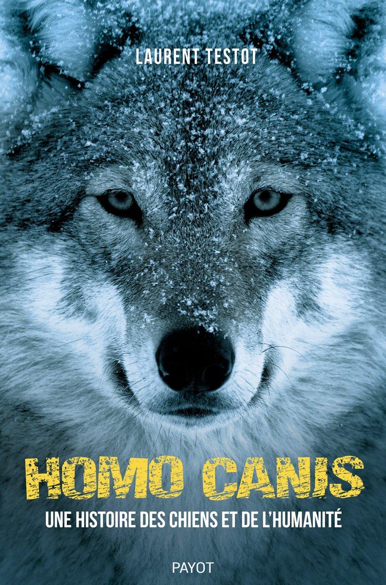 """[#émission] #LaurentTestot sera au micro de #CatherineMarchesin sur @francebleu #Auxerremidi pour parler de son dernier livre, """"Homo Canis"""". Pour tout savoir sur l'histoire des chiens et de l'humanité, c'est ici ! https://www.francebleu.fr/emissions/12h-13h-france-bleu-auxerre-midi/auxerre/homo-canis-ou-une-histoire-des-chiens-de-de-l-humanite-un-ouvrage-sorti-aux-editions-payot-et-signe…"""