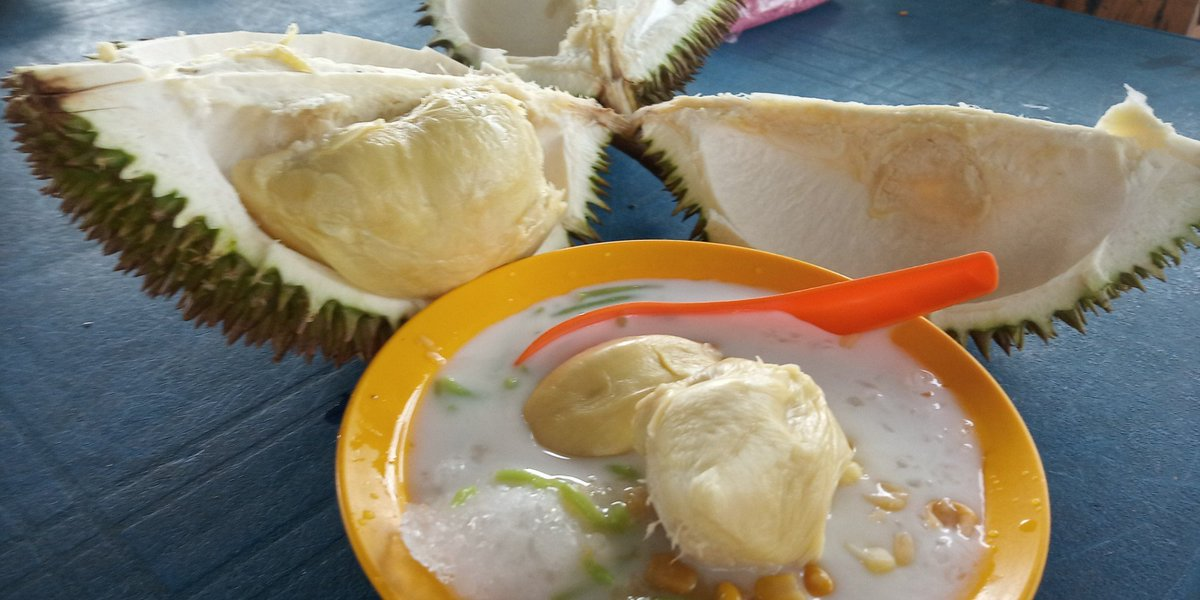 Image result for durian paya jaras