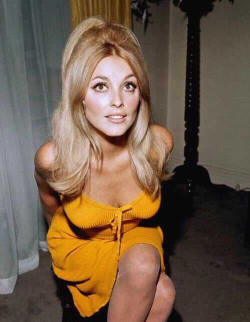 Happy birthday to sharon tate!!  sharon would be 76 today if she lived