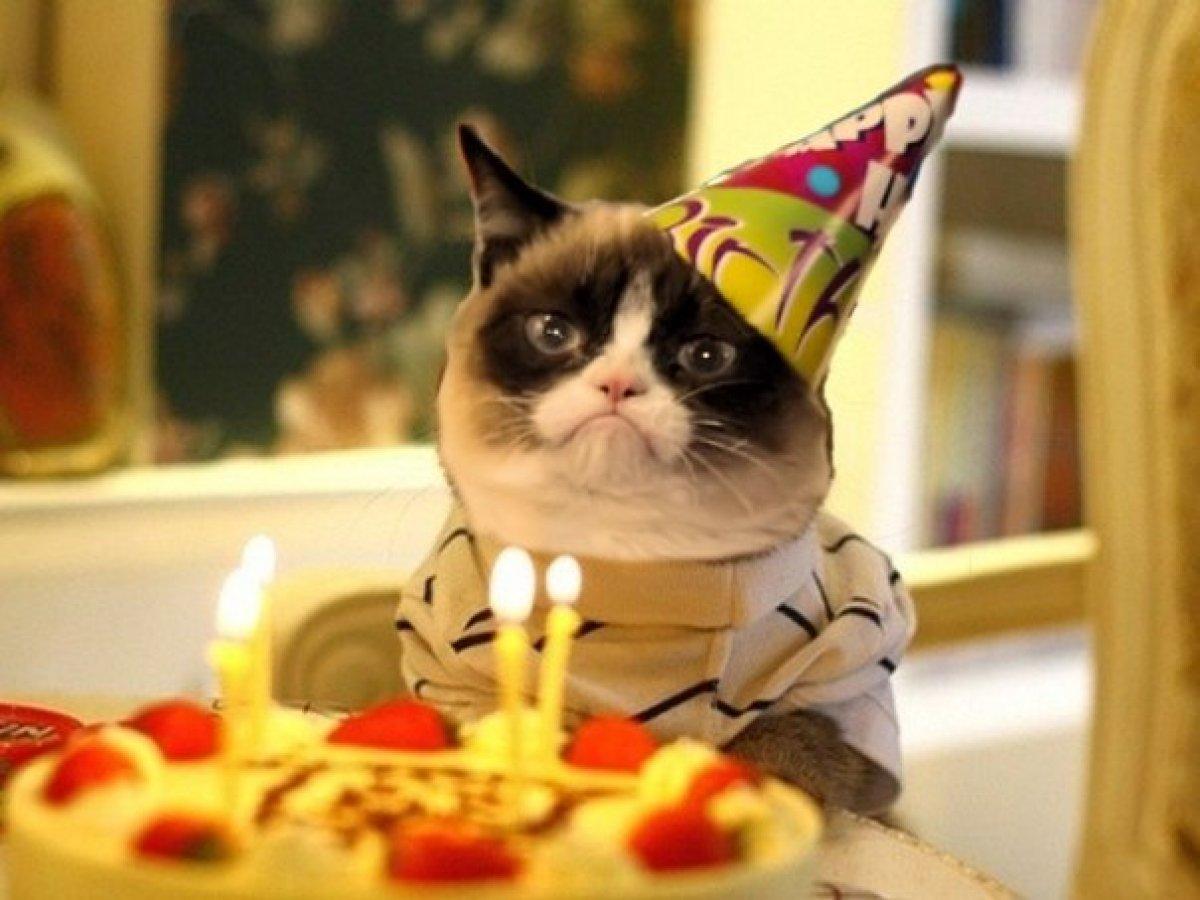 Дня, ура день рождения принимаю поздравления картинки