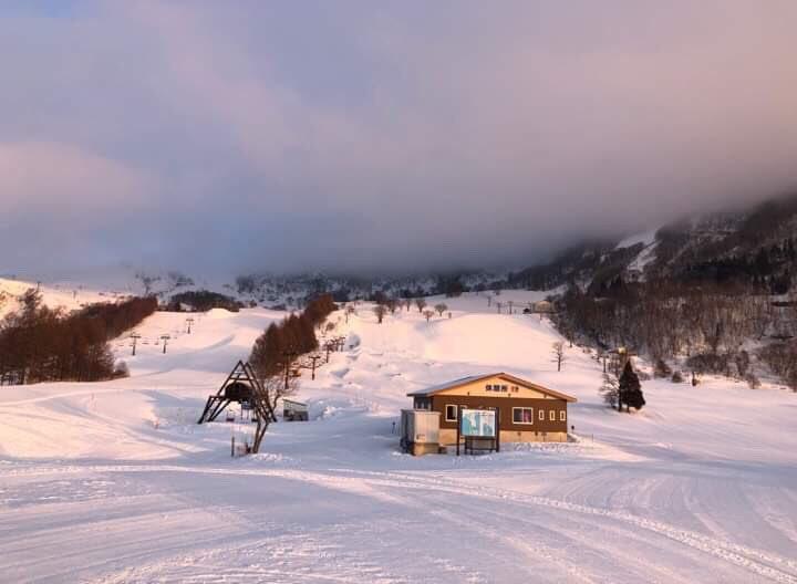 場 スキー ハチ 天気 北