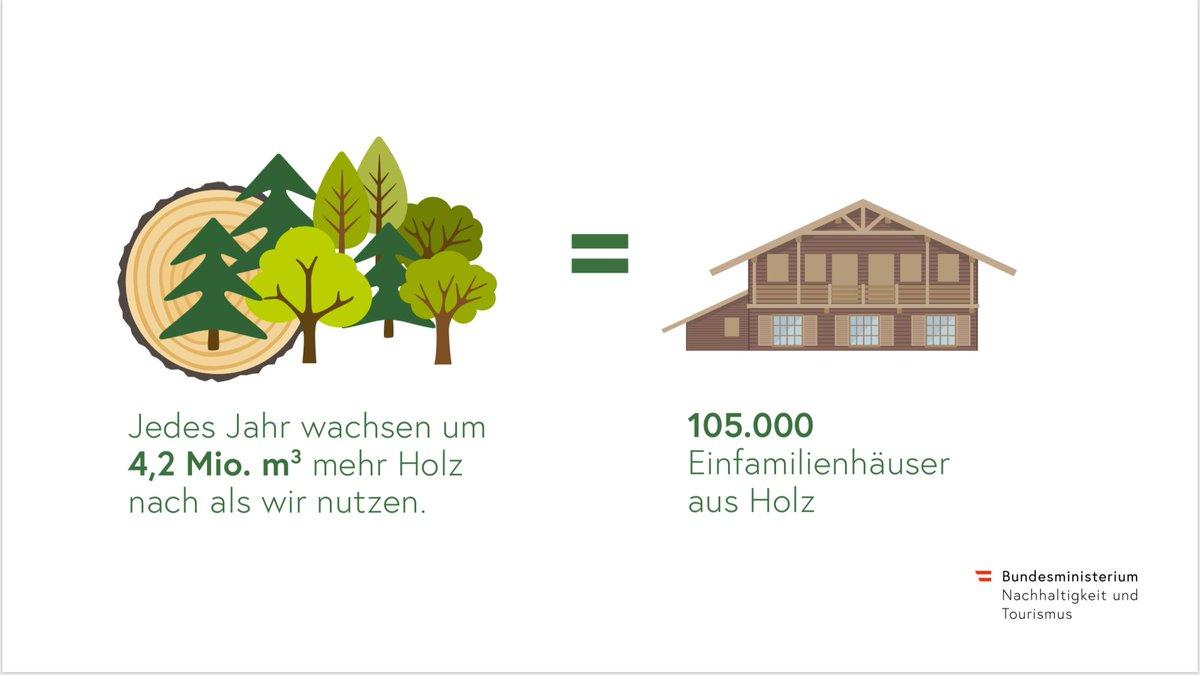 Elisabeth Kostinger Twitterren Unser Wald Wachst Jedes
