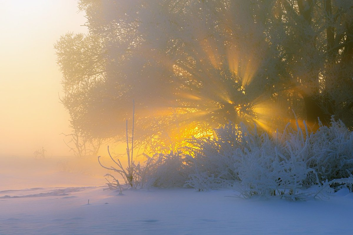 Утро морозное картинка