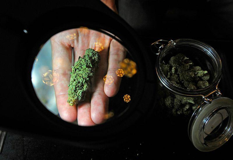 Простата марихуана мама марихуана скачать