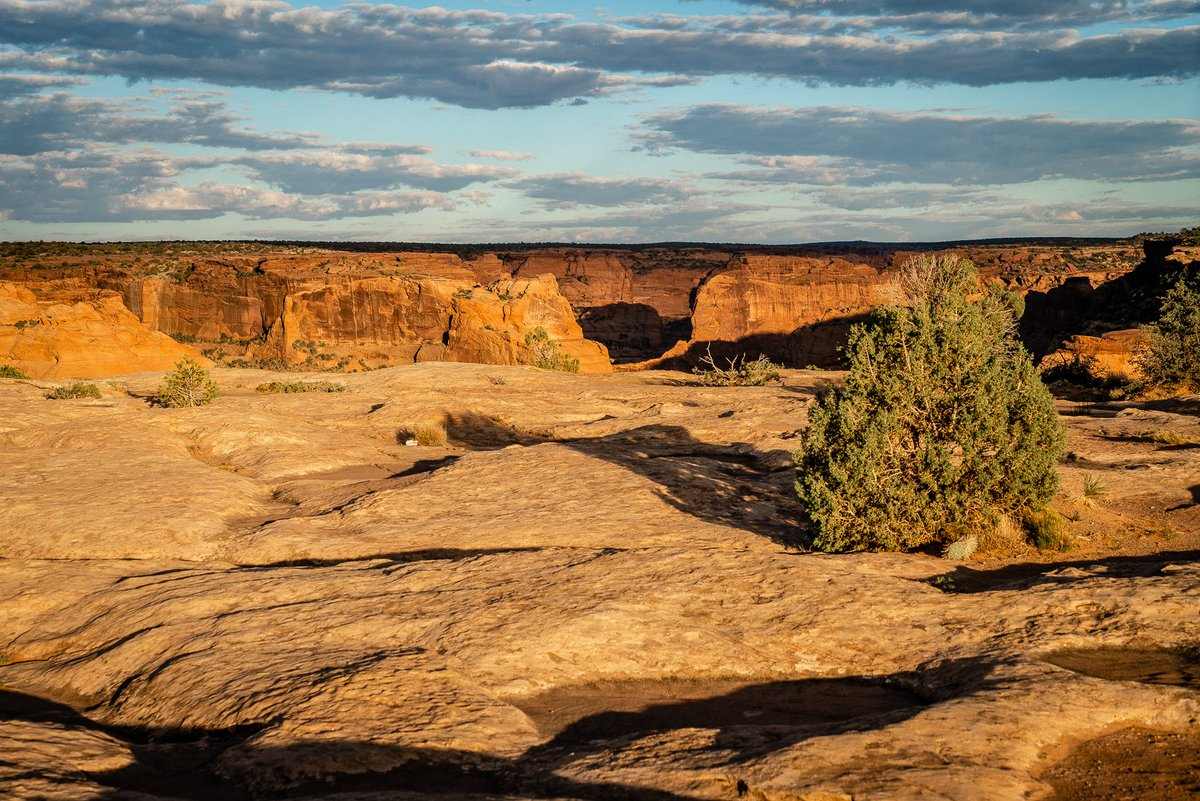 Setting sun lights the landscape at #CanyonDeChelly in Navajo Nation in Arizona #photooftheday #travelphotography #travel #travelphotos #tourism #travelgram #trover #picoftheday #instatravel #traveling #mytravelgram #travelingram #igtravel #traveler #SonyAlpha #sonyalphagallery