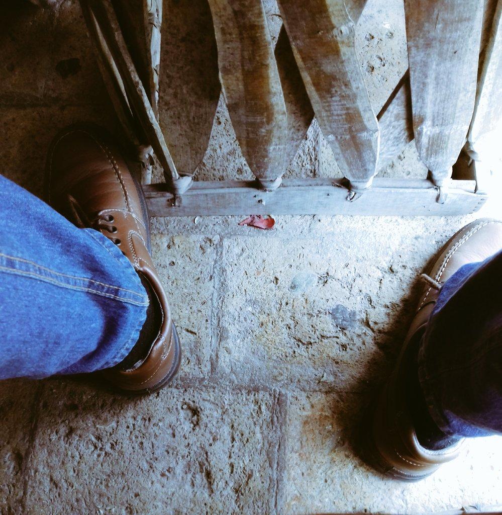 RT @Luis7gdl: #BuenosDiasATodos #FelizViernesATodos #BuenViernes  #FelizFinde https://t.co/jWU2z4zbaR