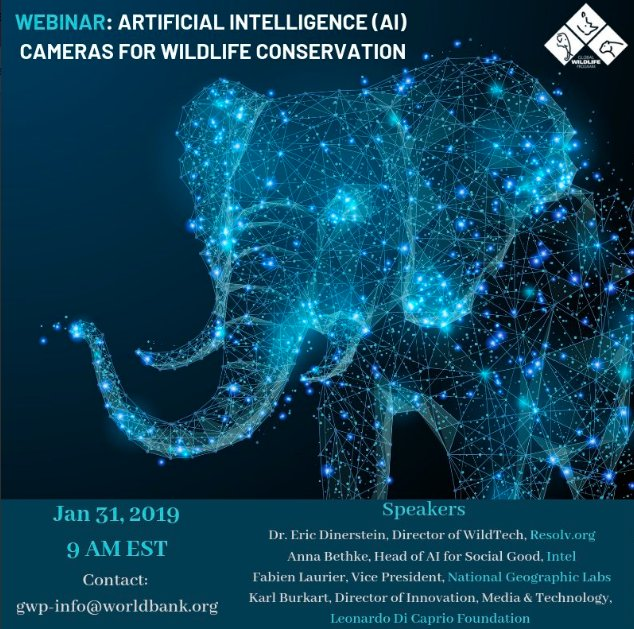 #Innovation and #Technology are saving #wildlife from poaching. Discover how in this new webinar with speakers from @resolvorg, @intel, @intelAI, @dicapriofdn, @NatGeo   Email: gwp-info@worldbank.org for details!