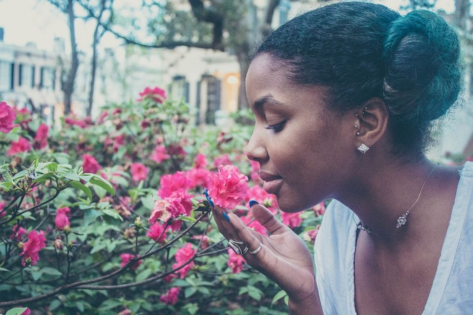 When someone is impressive, we might call them a visionary. But do we have any similar language for the sense of smell. Read on: https://buff.ly/2GiUK88 #visionary #language #fivesenses #senseofsmell #scent #science #culture