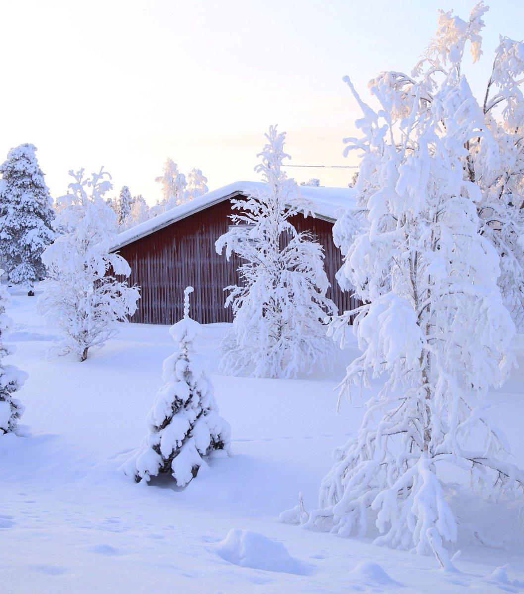 Lapland (Finland)  #Finlandiya #laponya https://t.co/ztfTEBmIZv