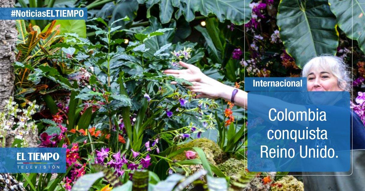 5.700 especies autóctonas se exhiben en el festival del real jardín ...