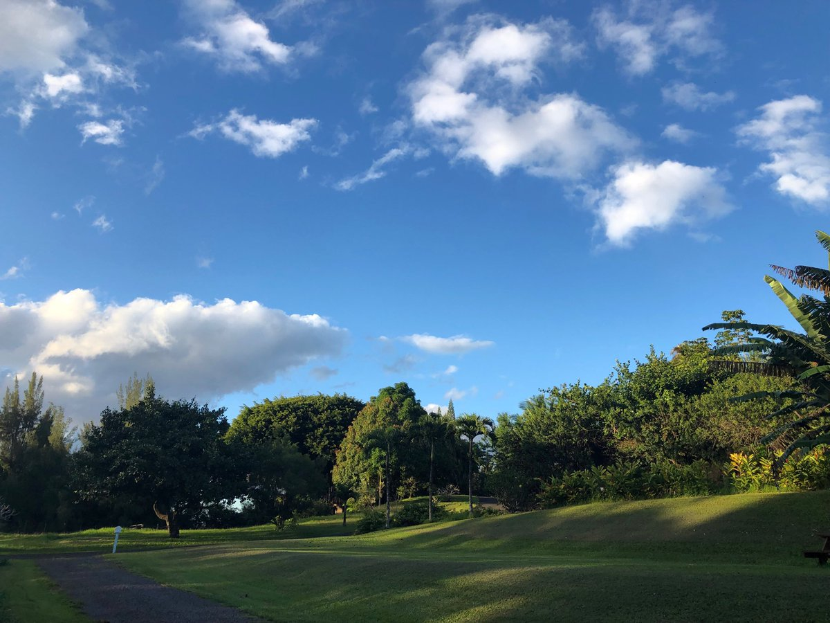 test Twitter Media - Beautiful still late afternoon in Haiku. #cmweather #bliss #magicalmaui https://t.co/lvvhn1DUGA