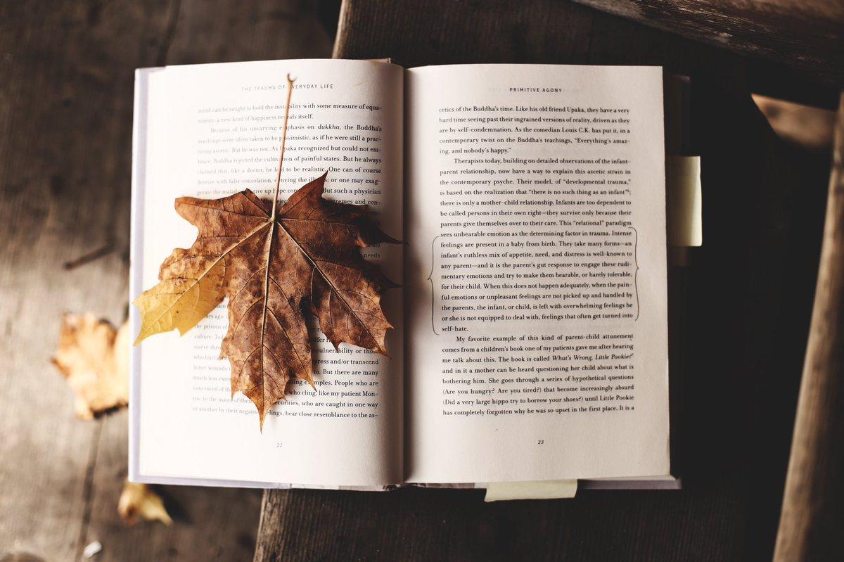 book Petite histoire de