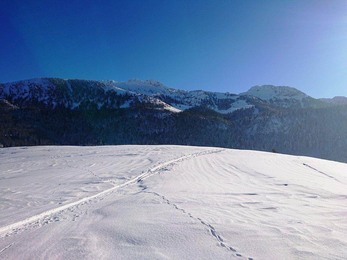 Chiemsee Alpenland On Twitter Genießt Das Schöne Wetter Heute