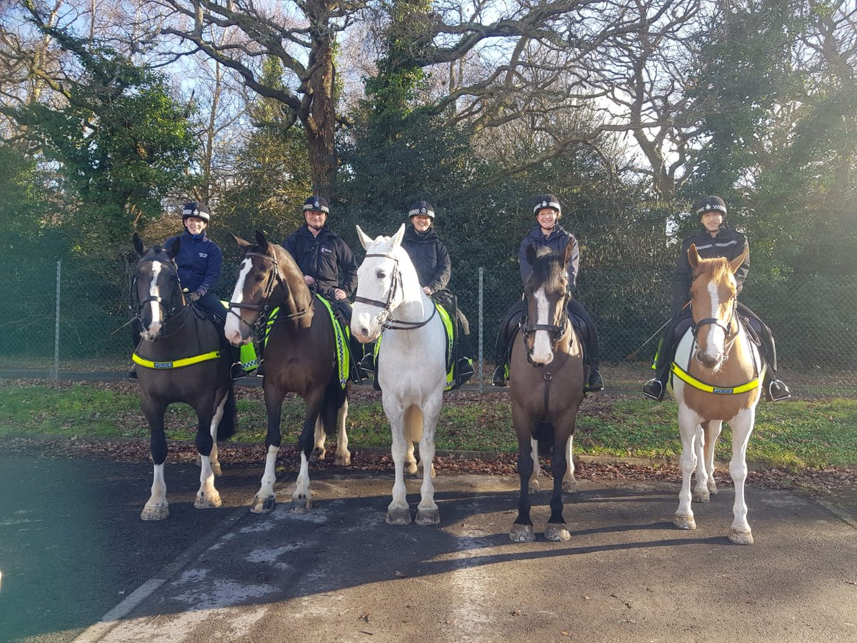 Glos Mounted Police En Twitter All The Horses Were Fab Yesterday Not Easy At All When You Have 20 Odd Officers In Full Riot Gear Running Around You Especially Pleased With Huntley