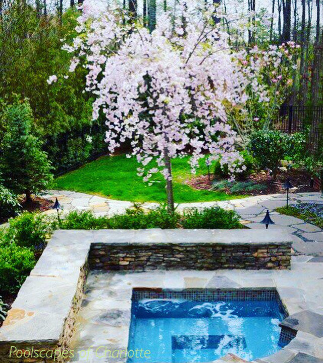 #landscaping - Landscaping Hashtag On Twitter