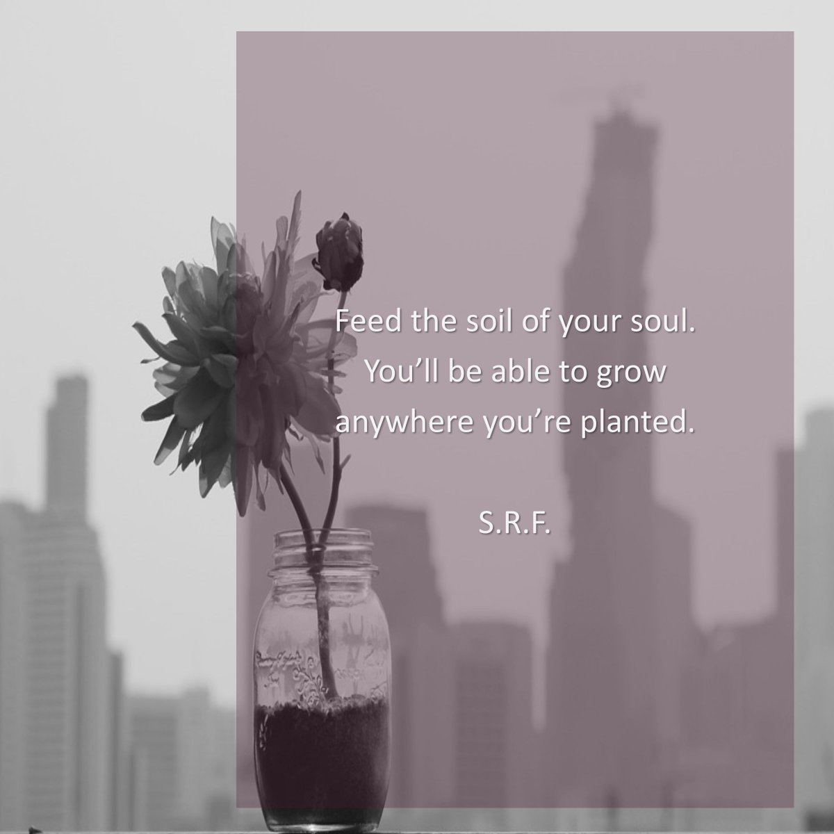 Nourish yourself right where you are for now. ~ S.R.F. #letstalkaboutfaith https://faithishowwelive.blogspot.com/2019/02/feed-your-soul.html…