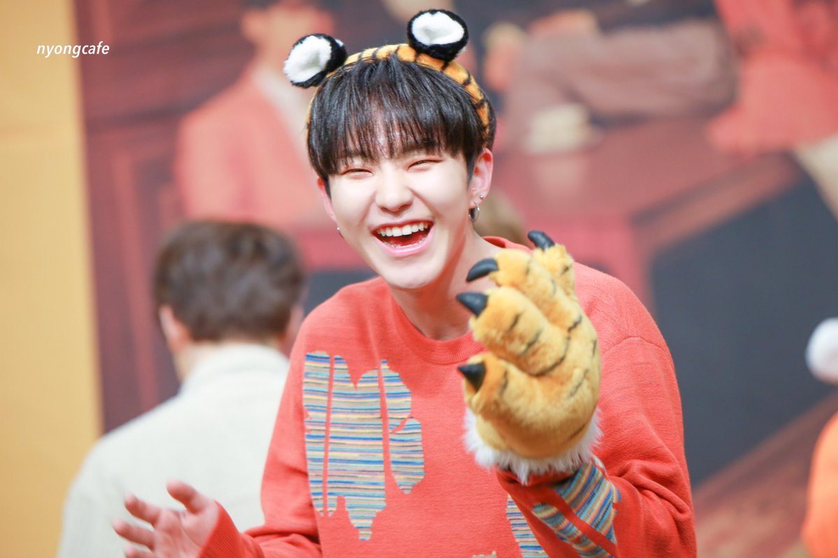 Svt S Hoshi And His Horangi Tiger Agenda Page 2 Allkpop Forums