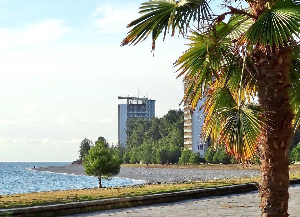 Абхазия пицунда фото отзывы жилье