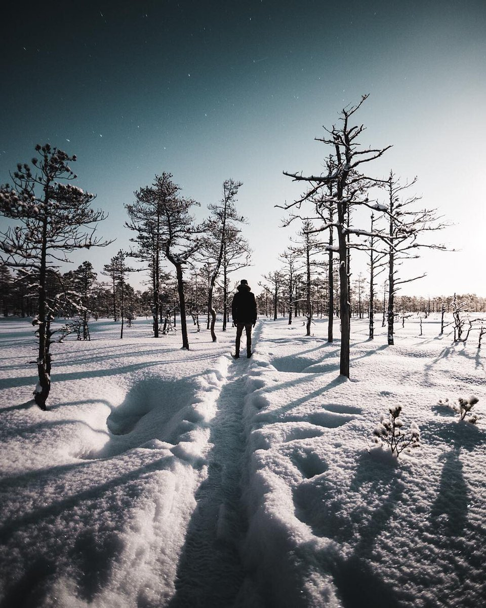 Visit Estonia On Twitter Winter Feels Like Winter Share Your Photos With Us On Instagram By Using Visitestonia Estonia Winter Travel Destination Nordic Vacation Https T Co Erajpgcetr