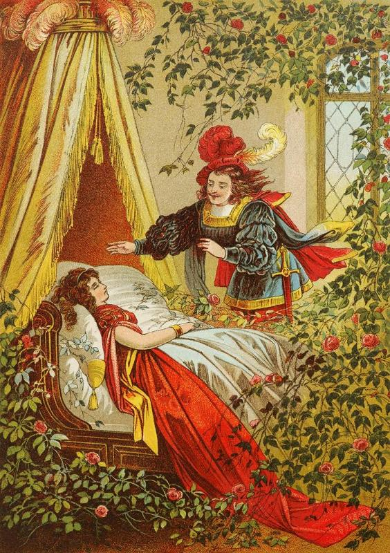 Спящая красавица картинки к сказке