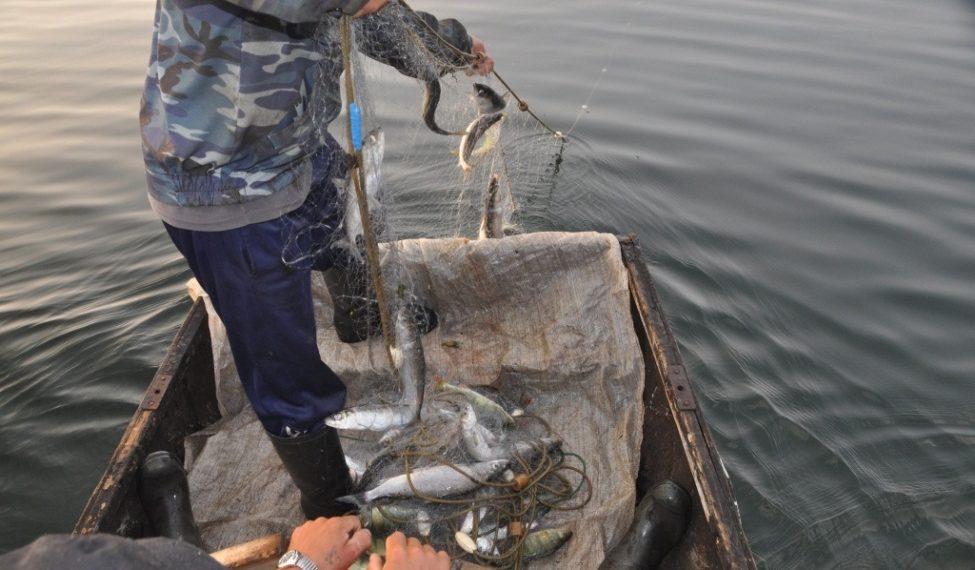 Ловля рыбы в неположенном месте