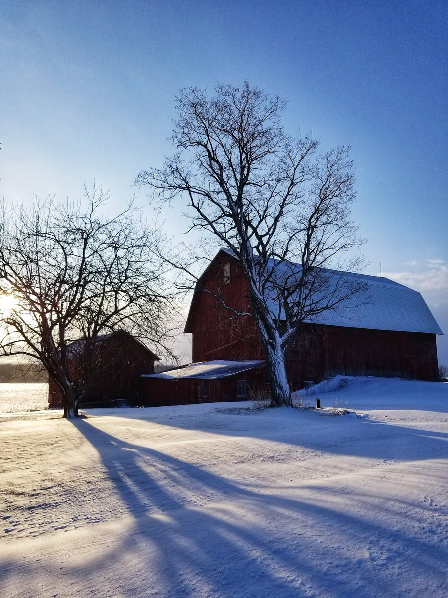 Dancing sunlight over the farm (photo)